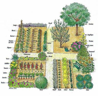 les brindherbes 100 racines :: le jardin de curé