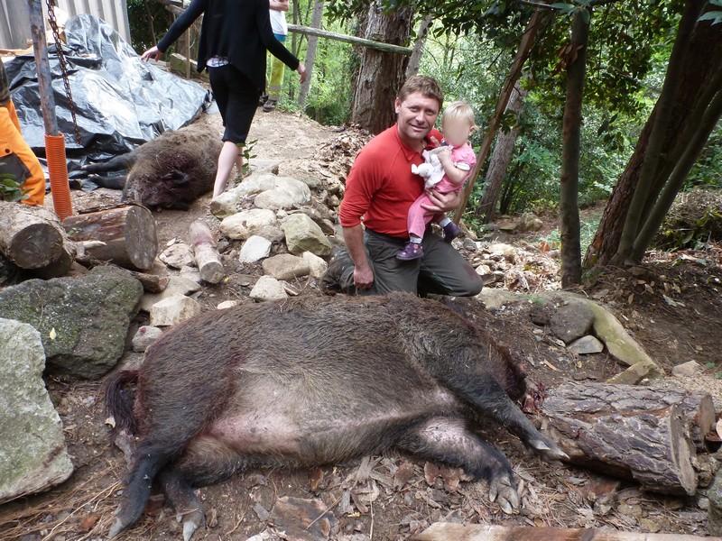 Le forum chasse et chien battue dans le gard 2 - Cuisiner du sanglier au four ...