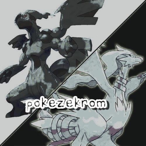 [PZ] Team PokéZekrom Index du Forum