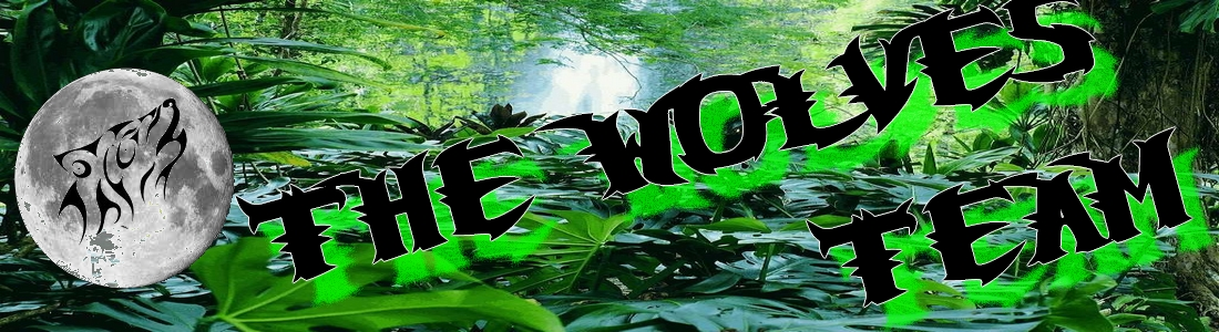 Airsoft Indre et Loire - Team Airsoft The Wolves - Site Officiel de l'Airsoft 37 - Indre et Loire. Index du Forum