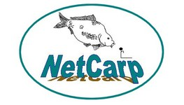 NetCarp Index du Forum