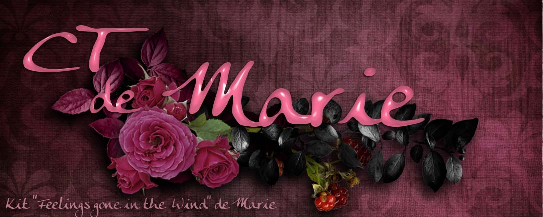 Le DIGISCRAP de MARIE Index du Forum