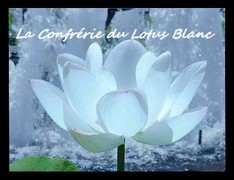 La Confrérie du Lotus Blanc Index du Forum