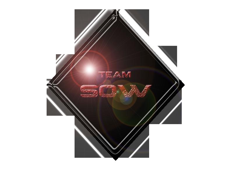 Team Sons of War Index du Forum