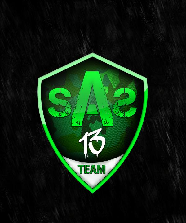 teamsas13 Forum Index