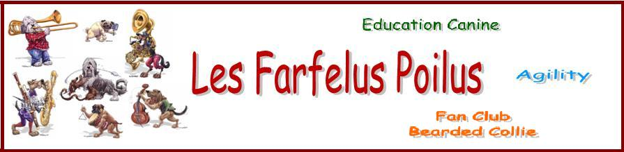 les farfelus poilus Index du Forum