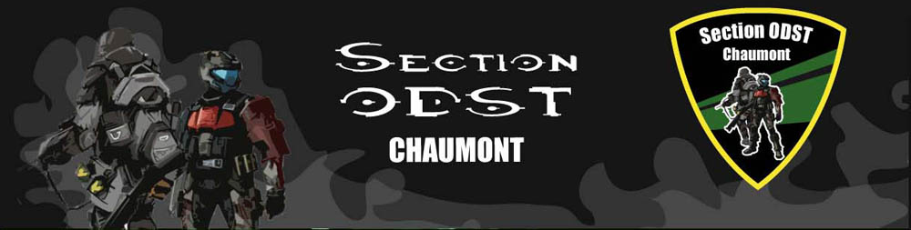 Section ODST Chaumon