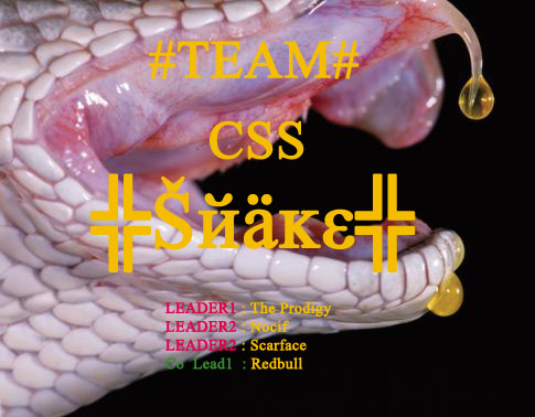 La team DES SNAKES Index du Forum