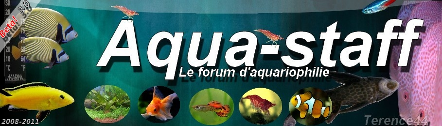 Aqua-Staff Index du Forum
