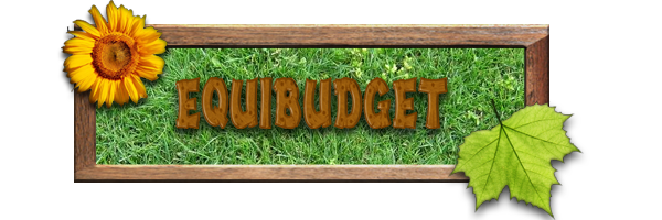 Equibudget Index du Forum