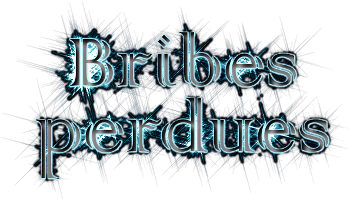 Les Bribes Perdues - forum de Créateurs Forum Index
