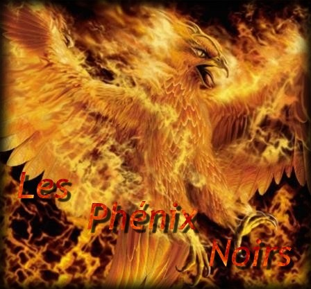 phenix noir Index du Forum