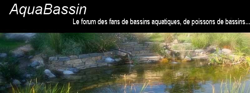 AquaBassin Index du Forum