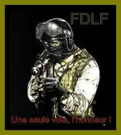 LES  FRERES  DE  LA  FORET Index du Forum