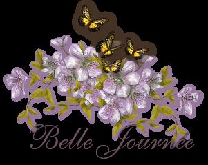 BON DIMANCHE 0-a-belle-journ-e-3c1510d