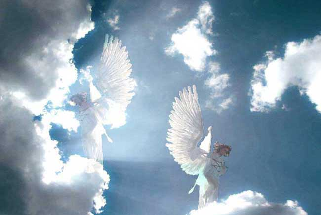 Rencontrer un ange terrestre