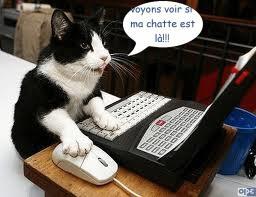 bonjour bonsoir du mois d'aout Humour-de-moi.-vo...st-la-..-3bc1486