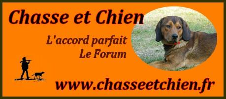 Le Forum Chasse et Chien.
