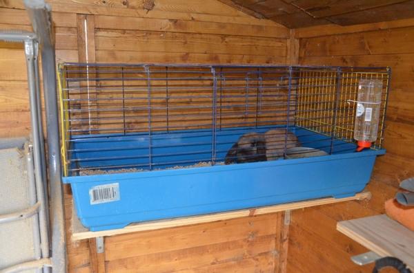 une m nagerie dans mon jardin cage ou non. Black Bedroom Furniture Sets. Home Design Ideas