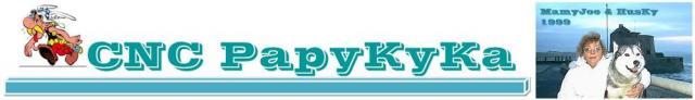 bruit de crécelle et arrêt moteur - Page 3 Logo-mamyjoe-husky-3bb6787