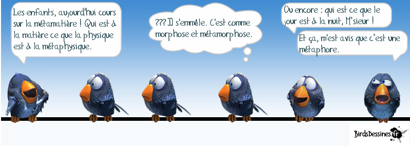 Cordes ou métamatière ? - Page 3 1355737954-3a6e9b9