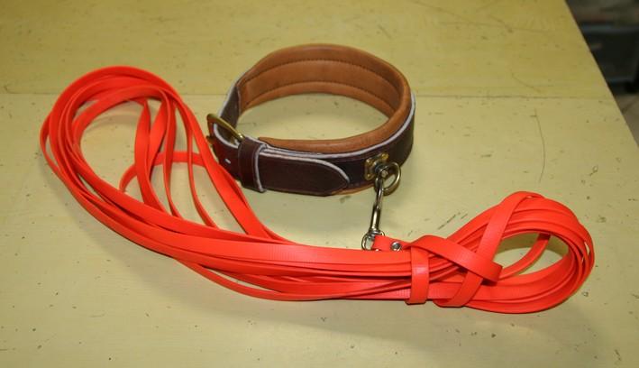 collier pour chien de recherche au sang
