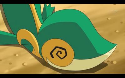 Fanclub Pokémon La Grande Aventure D Un Jeune Dresseur