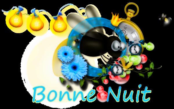 BONNE SOIREE DE JEUDI 1c382be1-4188958