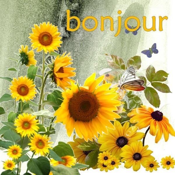 BONNE JOURNEE DE MERCREDI 0deff45b-3fe8892