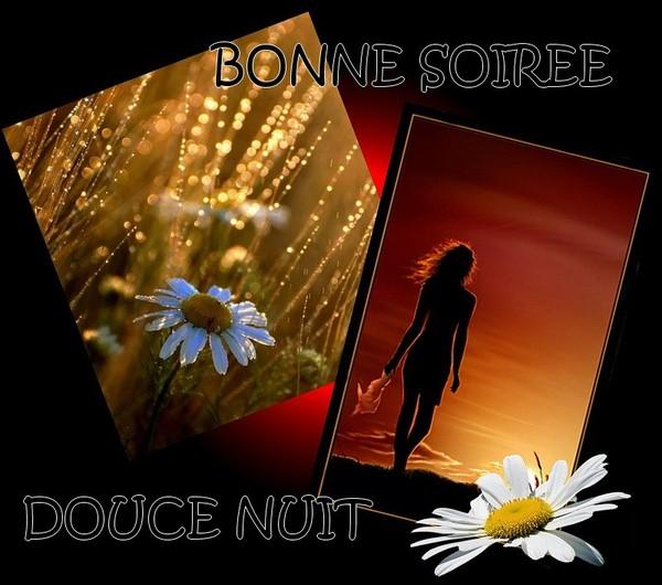 BONNE SOIREE DE VENDREDI Dacb85ac-41aee63