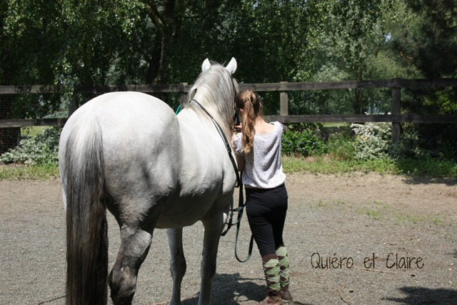 8 ans d'équitation..♥ - Page 7 Img_7219-3eba18b
