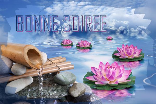 BONNE NUIT DU MARDI DU 13/05/2014 451de65c-3e33379