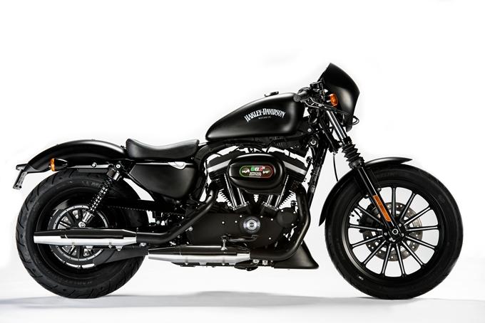 Sabot Moteur Harley Davidson Sportster