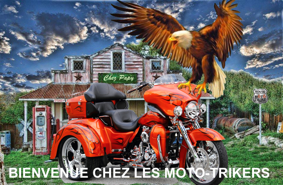 forum des moto trikers tri glide et bikeconversion only un petit breton. Black Bedroom Furniture Sets. Home Design Ideas