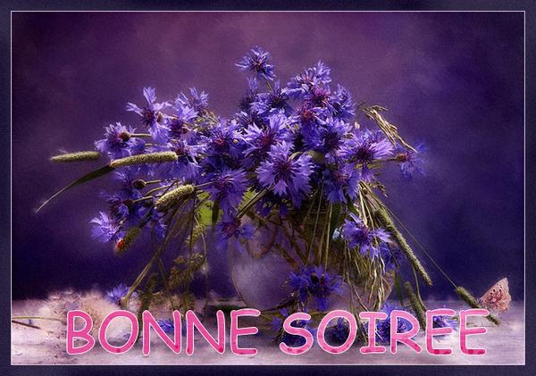 BONNE SOIREE DE MERCREDI D89c69e1-40eaa8a