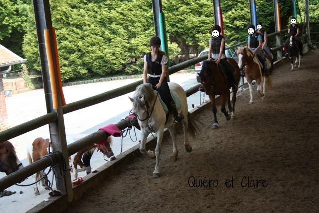 8 ans d'équitation..♥ - Page 7 Img_7505-3eba1b2