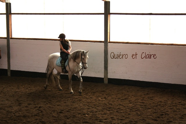 8 ans d'équitation..♥ - Page 7 Img_7406-3eba1af
