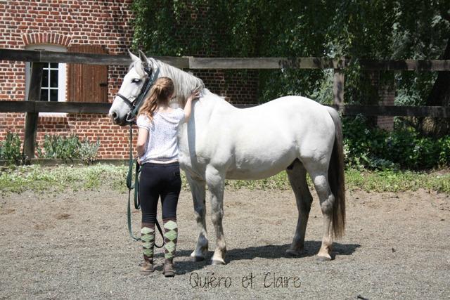 8 ans d'équitation..♥ - Page 7 Img_7288-3eba19d