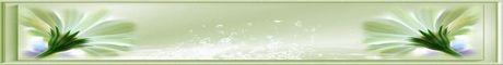 Bannières neutres 460x60 px et logos 88x31 px Plantes-verte-460x60-551def8