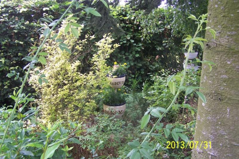 lieu de rencontre cougar lille